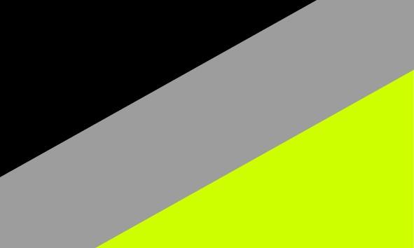 Negro/Gris/Fluor