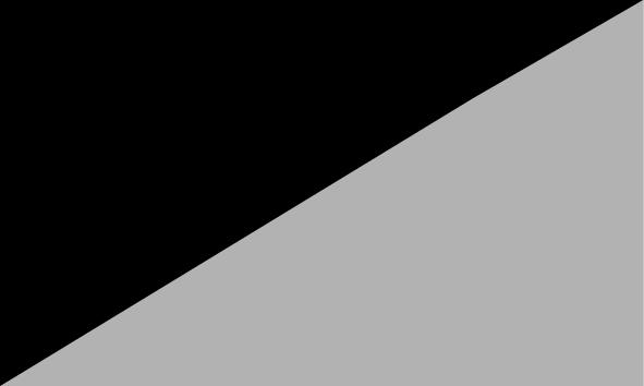 Gris / Negro